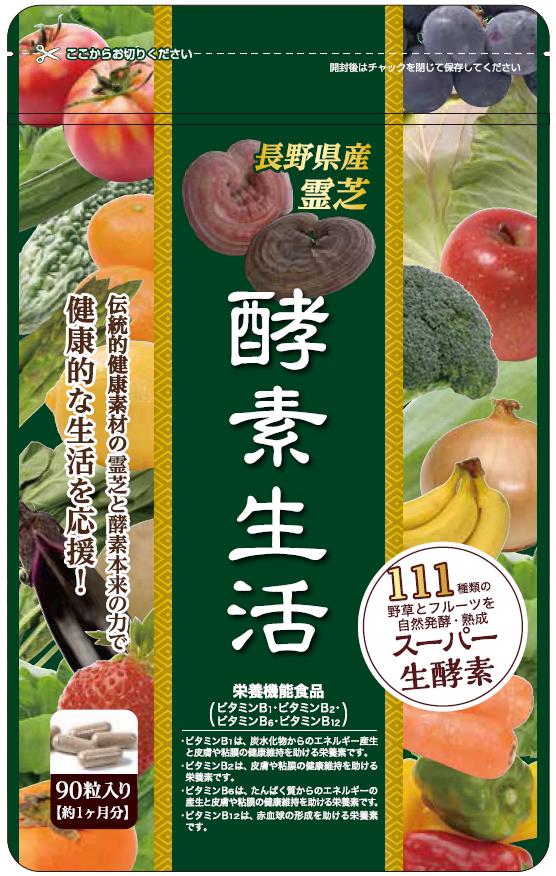 http://www.joyakuken.co.jp/news/images/kouso.png